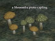 Shroomba proto-capling