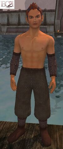 File:Bruiser's Vest (Visible, Male).jpg
