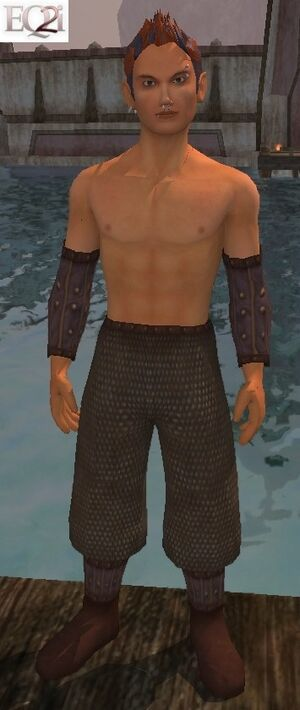 Bruiser's Vest (Visible, Male)