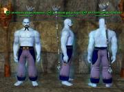 Genie (Coercer) Placed