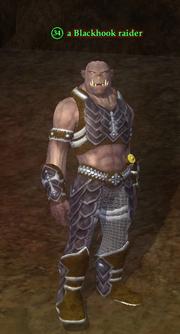 A Blackhook raider