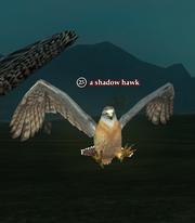 A shadow hawk