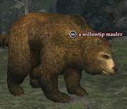 A willowtip mauler