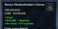 Novice Shadowbinder's Gloves