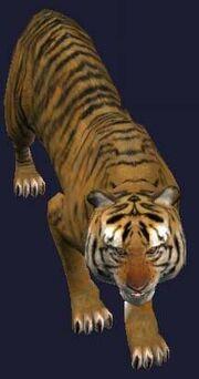 A tiny magical stuffed tiger (house)