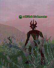 A Di'Zok blademaster