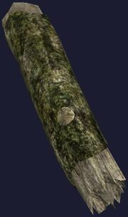 Large mossy log (Visible)