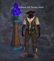 A House De'Tretlar slave