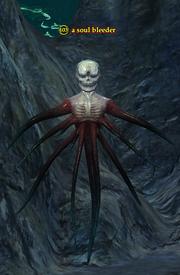 A soul bleeder
