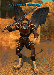 Skymarshall Stormfeather