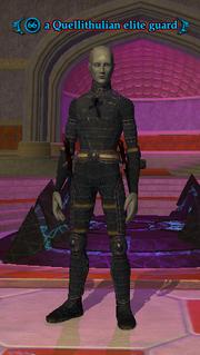 A Quellithulian elite guard