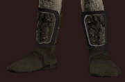 Moonfield Boots of the Wayfarer (Equipped)