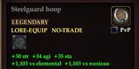Steelguard hoop (58)