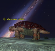 A large sand tortoise