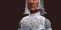 Forged Feyiron Chainmail (Armor Set)