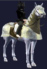 Dervish destrier horse