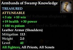 File:Armbands of Swamp Knowledge.jpg