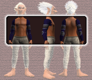 Battleshaman's Chainmail Shoulderguards (Equipped)