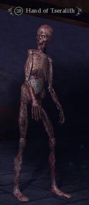Hand of Tseralith