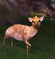 A fawn (Withered Lands)