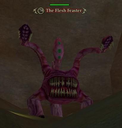 File:The Flesh Feaster.jpg