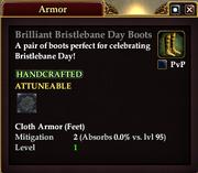 Brilliant Bristlebane Day Boots