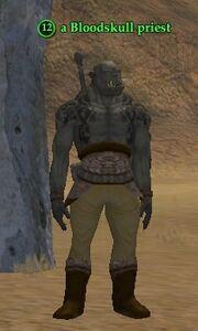 A Bloodskull priest