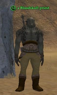 File:A Bloodskull priest.jpg