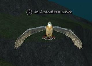 File:Antonican hawk.jpg