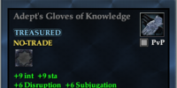 Adept's Gloves of Knowledge