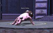 Hand of Vallon (Epic)