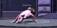 Hand of Vallon
