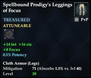 Spellbound Prodigy's Leggings of Focus