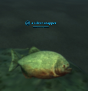 A silver snapper