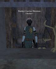 Banker Gavius Herenus