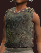 Plunderer's Small Link Chain Tunic (Equipped)