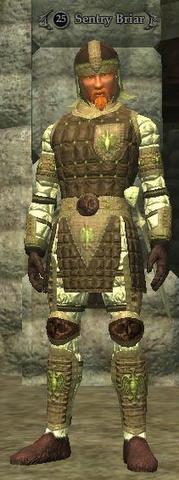 Sentry Briar