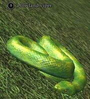 A lowland viper