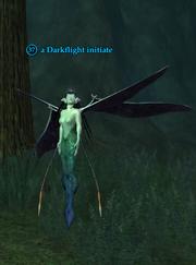 A Darkflight initiate