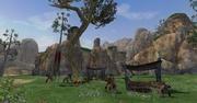 Camp Riridus