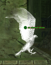 An eternal falcon