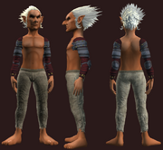 Chrono-Bound Cloth Shoulders (Equipped)