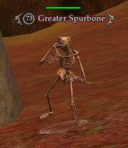 Greater Spurbone