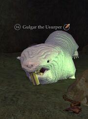 Gulgar the Usurper