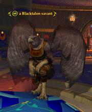A Blacktalon savant