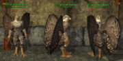 Aviak (Inquisitor) - Common Placed