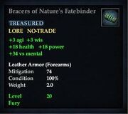 Bracers of Nature's Fatebinder