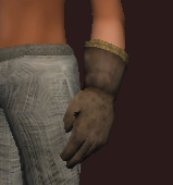 Brutal Expert's Hand Wraps (Equipped)