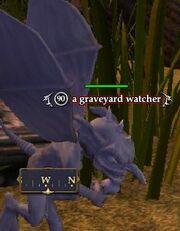 A graveyard watcher