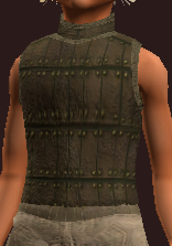Dexterous Tanned Leather Tunic (Equipped)